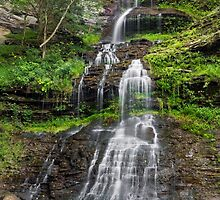 West Virginia's Cathedral Falls by Kenneth Keifer