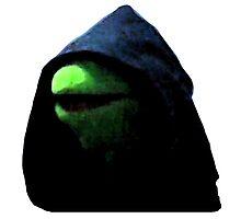 Inner me, (Kermit) pt. 2 Photographic Print