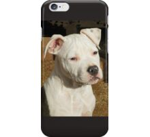 Teena iPhone Case/Skin