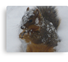 """Skippy In Snow"" Canvas Print"