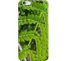 Magic garden: Heartland Retreat iPhone Case/Skin
