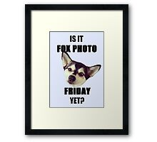 Is it #FoxPhotoFriday Yet? Framed Print