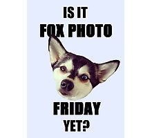 Is it #FoxPhotoFriday Yet? Photographic Print