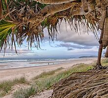 A Daydream Beneath the Pandanus by Cheryl Styles
