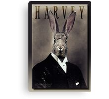 Harvey Canvas Print