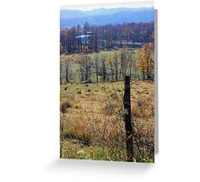Holly Meadows Greeting Card