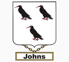Johns Coat of Arms (English) Kids Clothes