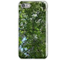 Temperate Canopy iPhone Case/Skin