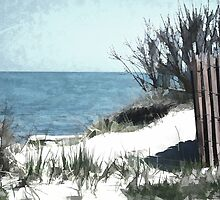 Beach Fence by BonnieToll