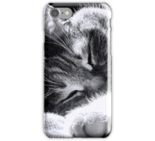 Sleeping Cat iPhone Case/Skin