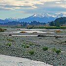 Landscape NZ by Harry Oldmeadow