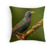 """EUROPEAN STARLING"" Throw Pillow"