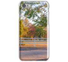 Southern Fall iPhone Case/Skin