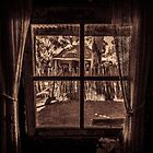 Through The Window by DVJPhotography