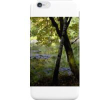Forest Through the Trees 2 iPhone Case/Skin