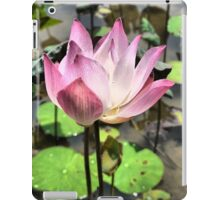 The Delicacy of a Water-lily iPad Case/Skin