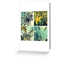 Wander Through Spring II Greeting Card