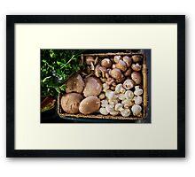 Basket of Mushrooms Framed Print