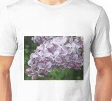 Lilac Beauty Unisex T-Shirt