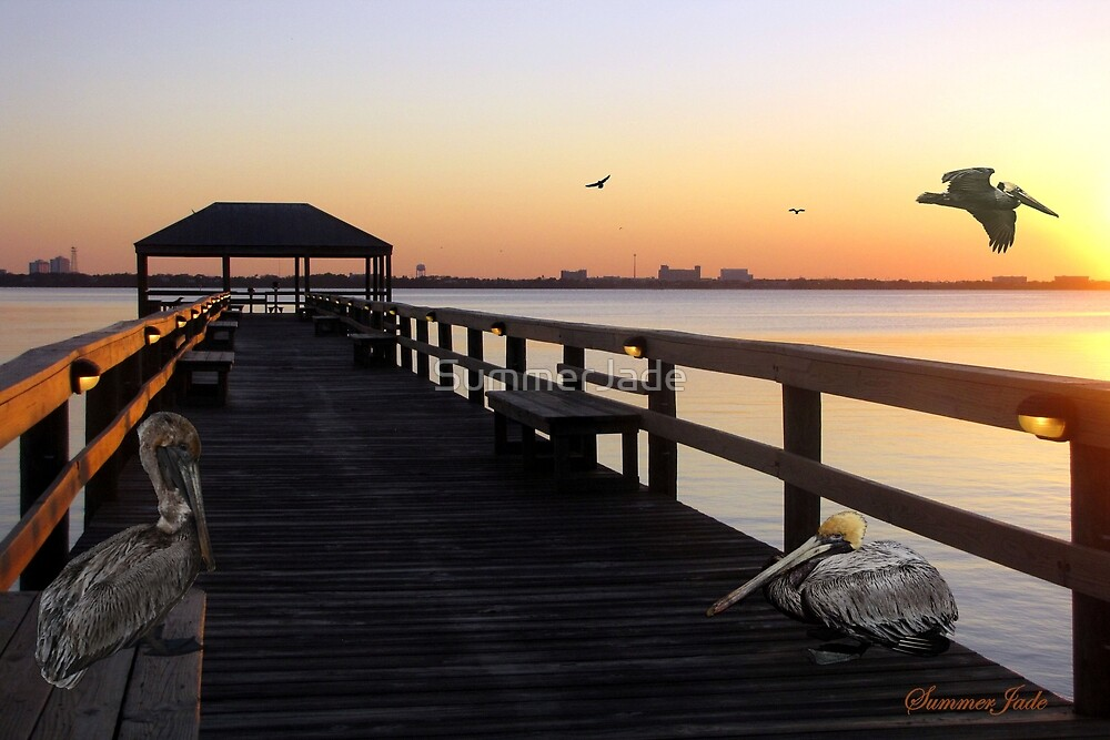 Pelicans on the Pier ~ Indian River by SummerJade