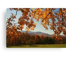 An Autumn's View Canvas Print