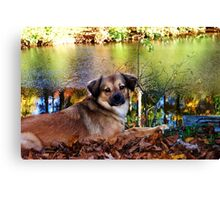 Enjoying Autumn Canvas Print