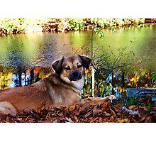 Enjoying Autumn Photographic Print