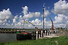 Dutch Glory on a Sunny Day by AnnieSnel