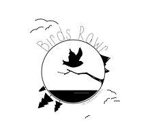Birds Rawr - World by bensparrow