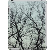 bird and Trees sillouette iPad Case/Skin