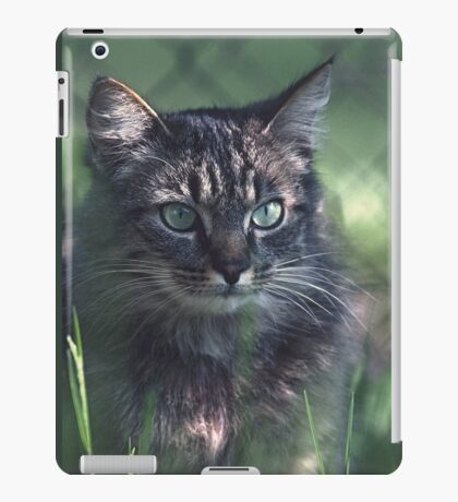 """Chat - Cat """" Tchink boom"""" 02 (c)(t) ) by Olao-Olavia / Okaio Créations 300mm f.2.8 canon eos 5 1989  iPad Case/Skin"""