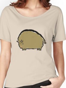 big brown bison Women's Relaxed Fit T-Shirt