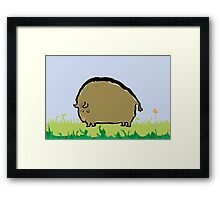 big brown bison Framed Print