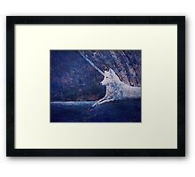 Wolf in the Evening Framed Print