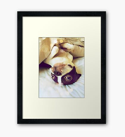 I'm not ready to get up yet Framed Print