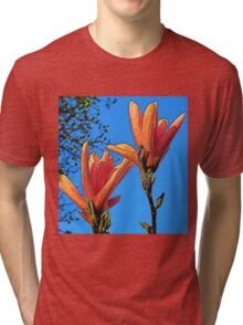 Artistic Magnolia Tri-blend T-Shirt