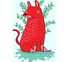 Big red Dog Photographic Print
