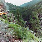 Durango to Silverton Narrow Gauge Railroad, Colorado, USA by Adrian Paul
