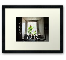 Still Life with Geraniums II Framed Print