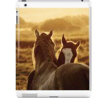 16.9.2014: Horses iPad Case/Skin