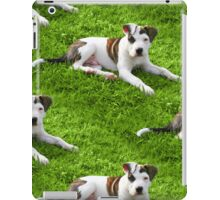Pit Bull T-Bone Puppy iPad Case/Skin