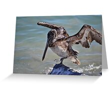 Pelican Practicing the Crane Pose from the Karate Kid  Greeting Card