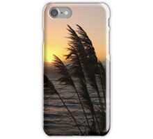 Big Sur Sunset iPhone Case/Skin