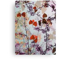 Autumn Tree Leaves  Canvas Print