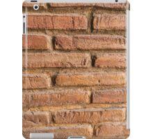 Vintage red brick wall texture background iPad Case/Skin