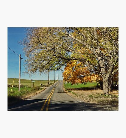 The road to home Photographic Print
