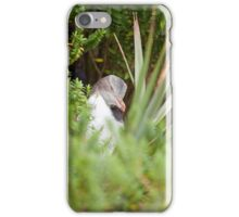 Shy Penguin iPhone Case/Skin