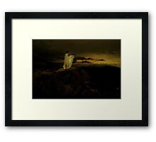 to the edge of the world and back Framed Print