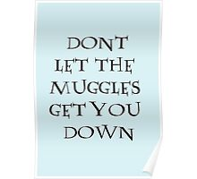 Dont Let The Muggles Get You Down Poster