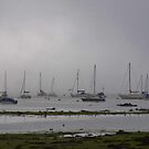 A Foggy Afternoon At Emsworth by lezvee
